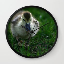 Cute Duckling Walking on a Lawn Wall Clock
