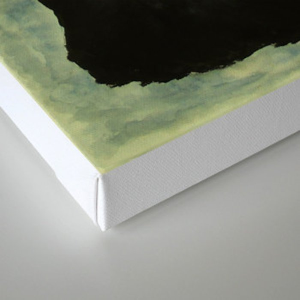 Tresses Strewn Out Canvas Print