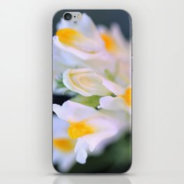 Darling Buds iPhone Skin