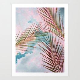 Palms + Sky Art Print