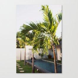 Bali Palm Canvas Print