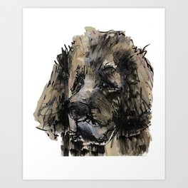 Leonberger Art Print