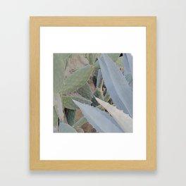 photo 2 Framed Art Print