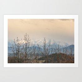 Snowy mountains through the trees Art Print