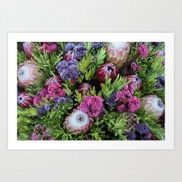 Proteas and Fynbos Art Print