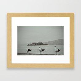 The opposites: Alcatraz and the freedom of seagulls Framed Art Print