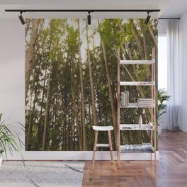 The Tall Trees Wall Mural