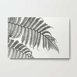 Charcoal Tree Fern Bottoms Up Metal Print