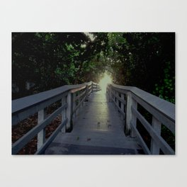 come on over Canvas Print