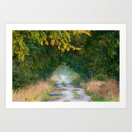 Alley of lime trees in autumn Art Print