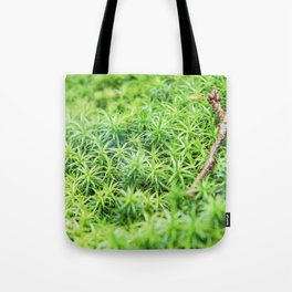 Forest of moss Tote Bag
