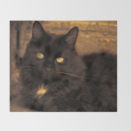 Golden Eyed Kitty Throw Blanket