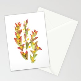 Clay Wattle Stationery Cards