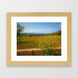 Majorca Meadow Landscape Framed Art Print