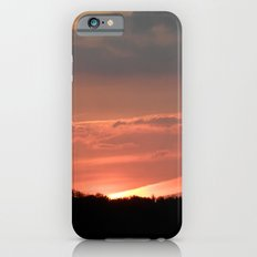 A Bird at Sunset Slim Case iPhone 6s