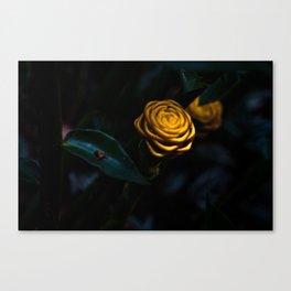 Zingiber Spectabile Canvas Print