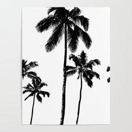 Monochrome tropical palms Poster