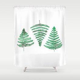 Fiordland Forest Ferns Shower Curtain