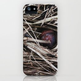 The Acorn (Promise Nested) iPhone Case