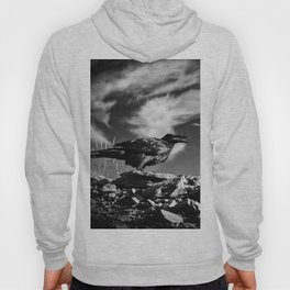 Raven and Clouds Hoody