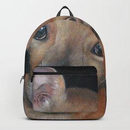 Cookies? Backpack