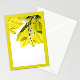 Twig with young green leaves on white Stationery Cards
