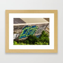 Wall Graffiti with Plants Framed Art Print