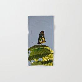 The Queen Alexandra Bird Wing Butterfly by Teresa Thompson Hand & Bath Towel