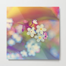 Rainbow Flowers Nature Photography Metal Print