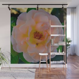 Peachy by Teresa Thompson Wall Mural