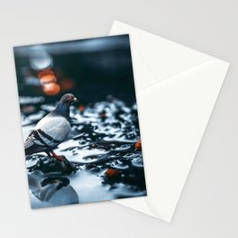 Gracious Magnificent Pigeon Solo On Lonely Wet Autumn Road Ultra HD Stationery Cards