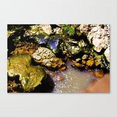Just Rocks  Canvas Print