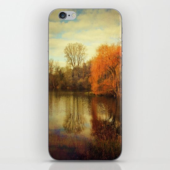 Pond iPhone & iPod Skin