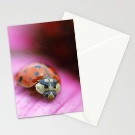 Lady of Summer Stationery Cards