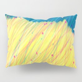 Manorbier Rain Pillow Sham
