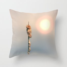 Late Summer Sun Throw Pillow