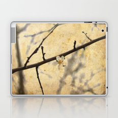 Lonely Flower Laptop & iPad Skin
