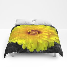 Sunshine #1 Comforters
