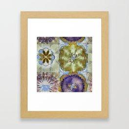 Unoiled Vulnerable Flower  ID:16165-055943-96401 Framed Art Print