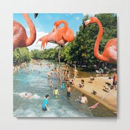 Flamingo Shore Metal Print