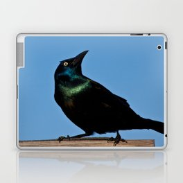 Stink Eye Laptop & iPad Skin
