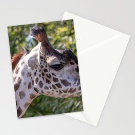 Masai giraffe head portrait Stationery Cards