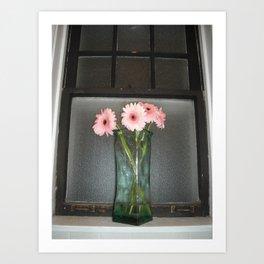 pink daisies ~ flowers on vintage sill Art Print