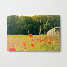 Farmshare Flowers: June 2017 Metal Print