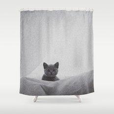 Kitten under the sheets Shower Curtain