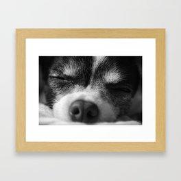 Rufio Sleeping Framed Art Print