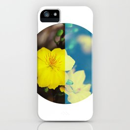 Vietnam Hoa Mai Yellow Apricot Blossom Lunar New Year iPhone Case