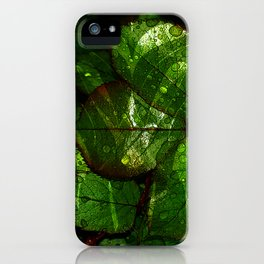 leaves V4WL iPhone Case