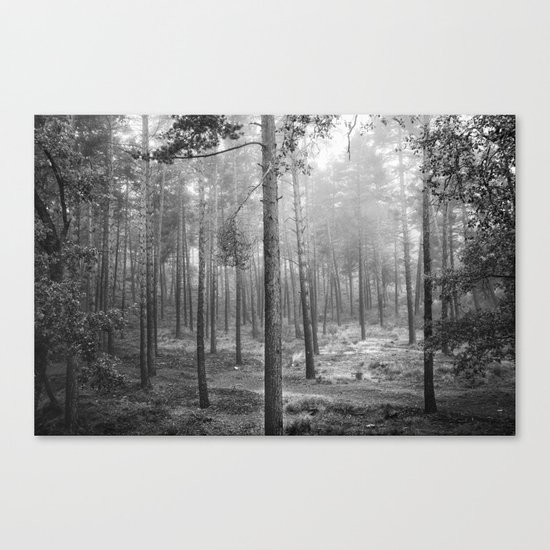 """Rectilineum"". BW. Secret places. Foggy dreams. Canvas Print"