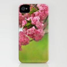 Cherry Orchard iPhone (4, 4s) Slim Case